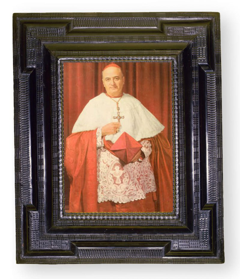Cardinal Archbishop Meyer